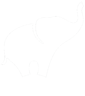 Веб студия Human Graphics